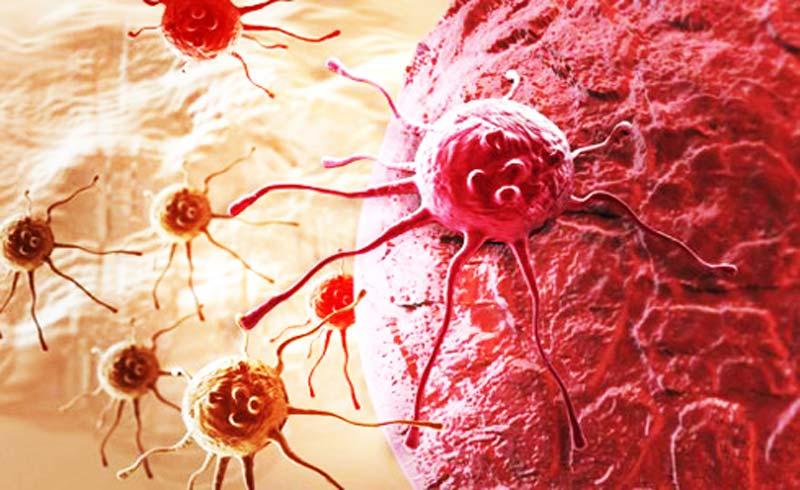 Phát hiện loại protein chặn tế bào ung thư di căn trong cơ thể