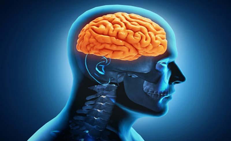Xăm hình lên não để điều trị bệnh