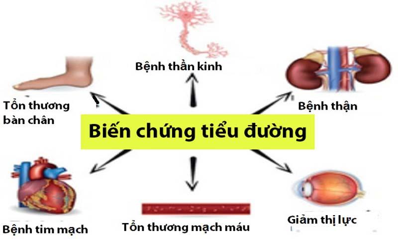 Thảo dược hỗ trợ ngăn ngừa biến chứng của đái tháo đường