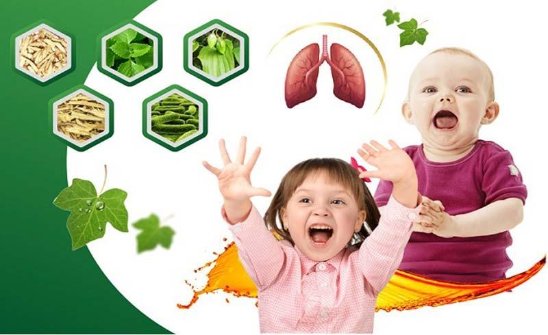 Thảo dược thiên nhiên hỗ trợ giảm ho, viêm hô hấp