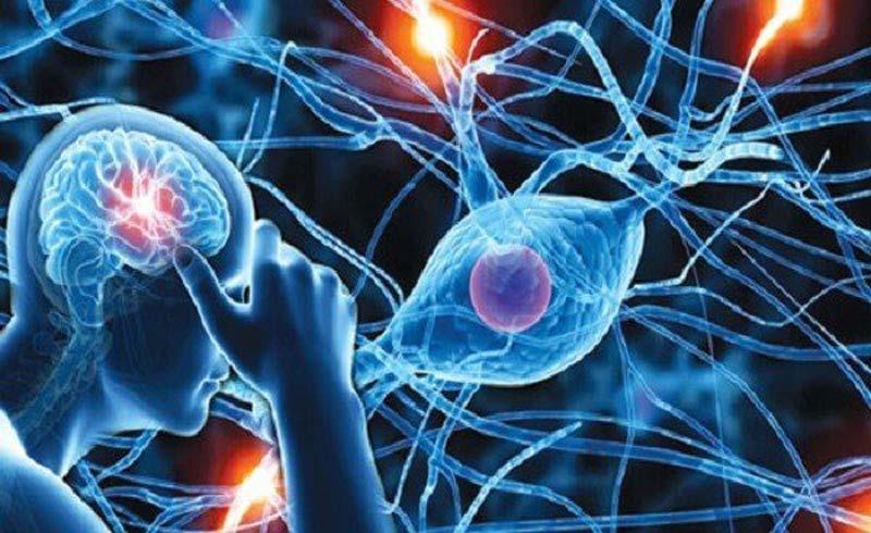 Rối loạn thần kinh thực vật có chữa được không?