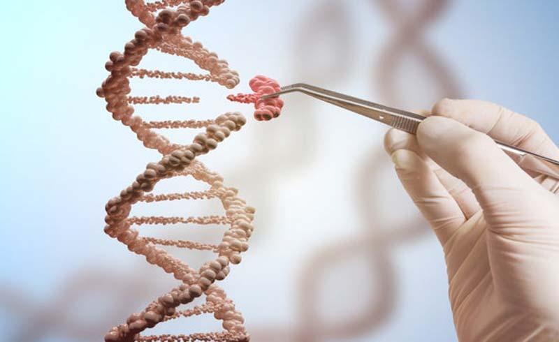 Công nghệ chỉnh sửa gene mới mở ra hướng điều trị các bệnh do khiếm khuyết gene