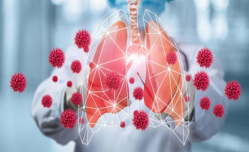Nitric Oxide và những đóng góp cho y học hơn 2 thập kỷ